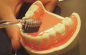 Hochkant-Zahnputztechnik